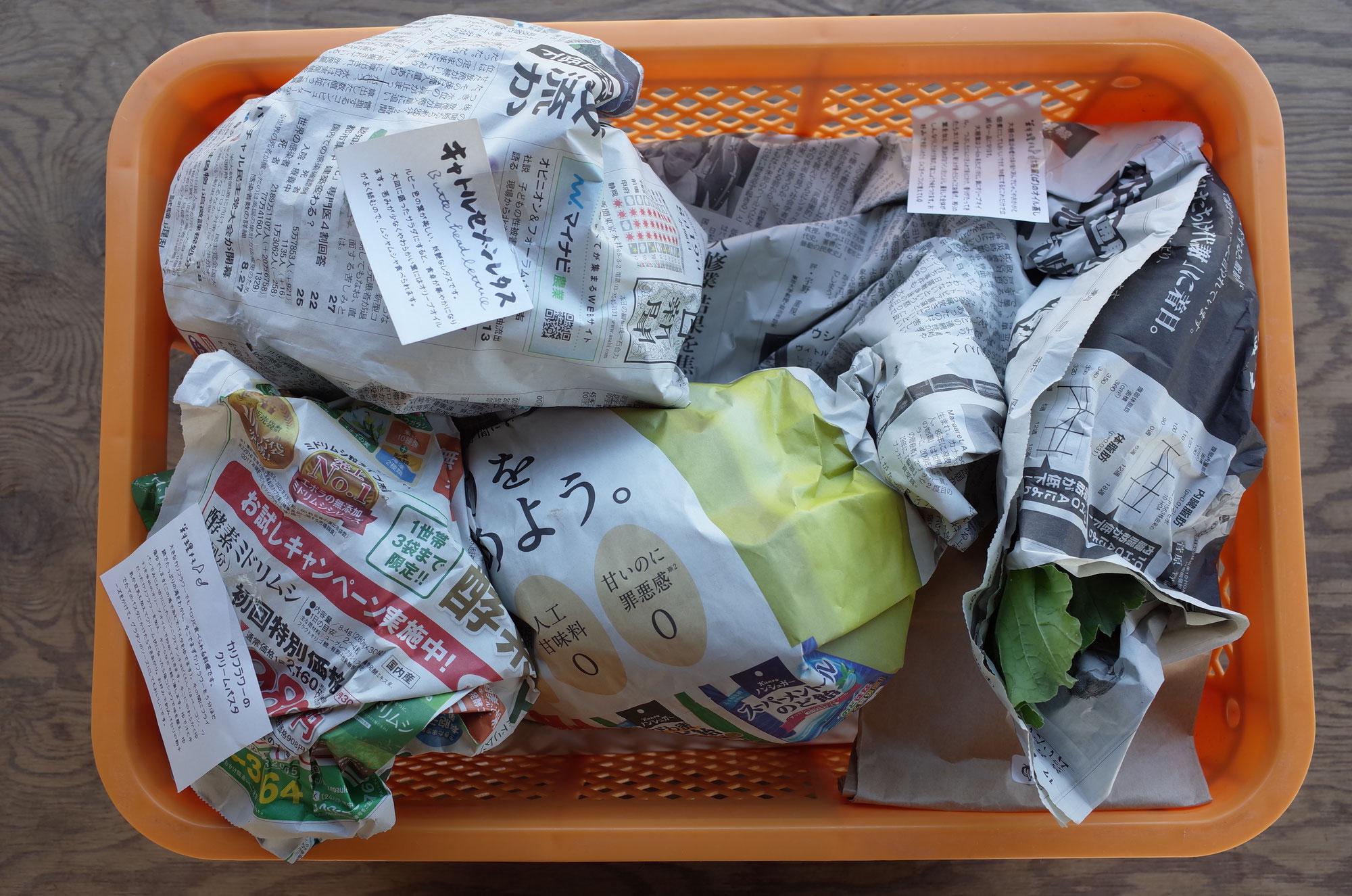 みどりの通信 2020年11月 野良で考える プラスチックごみ問題/菌は働きもの