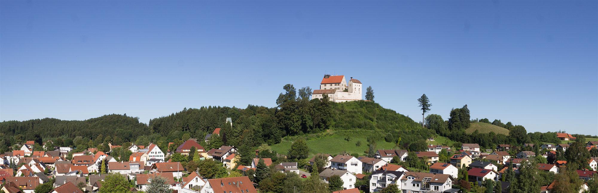 Binger Waldburg