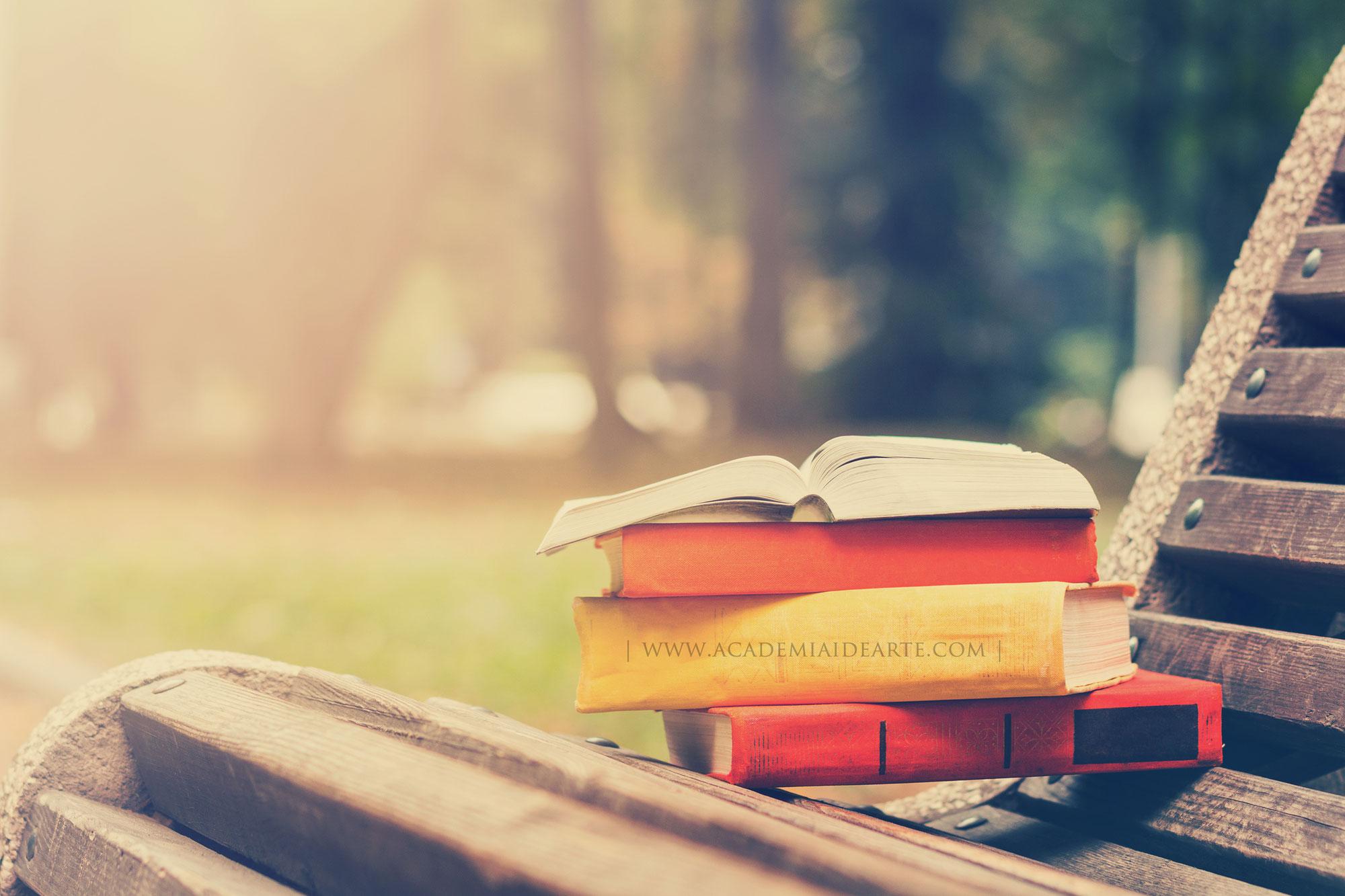 Amar los libros