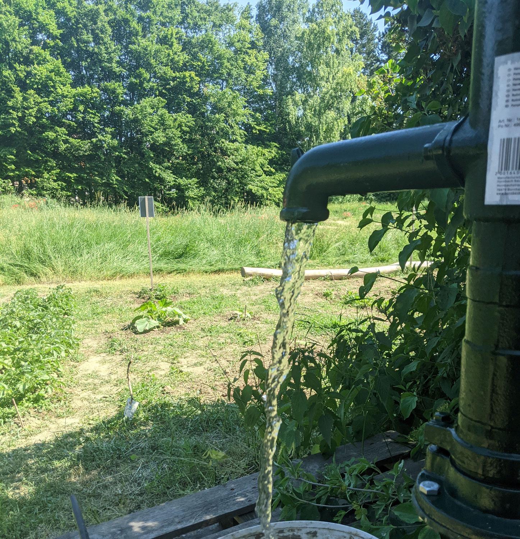 Wasser für Schulgarten und Naschgarten