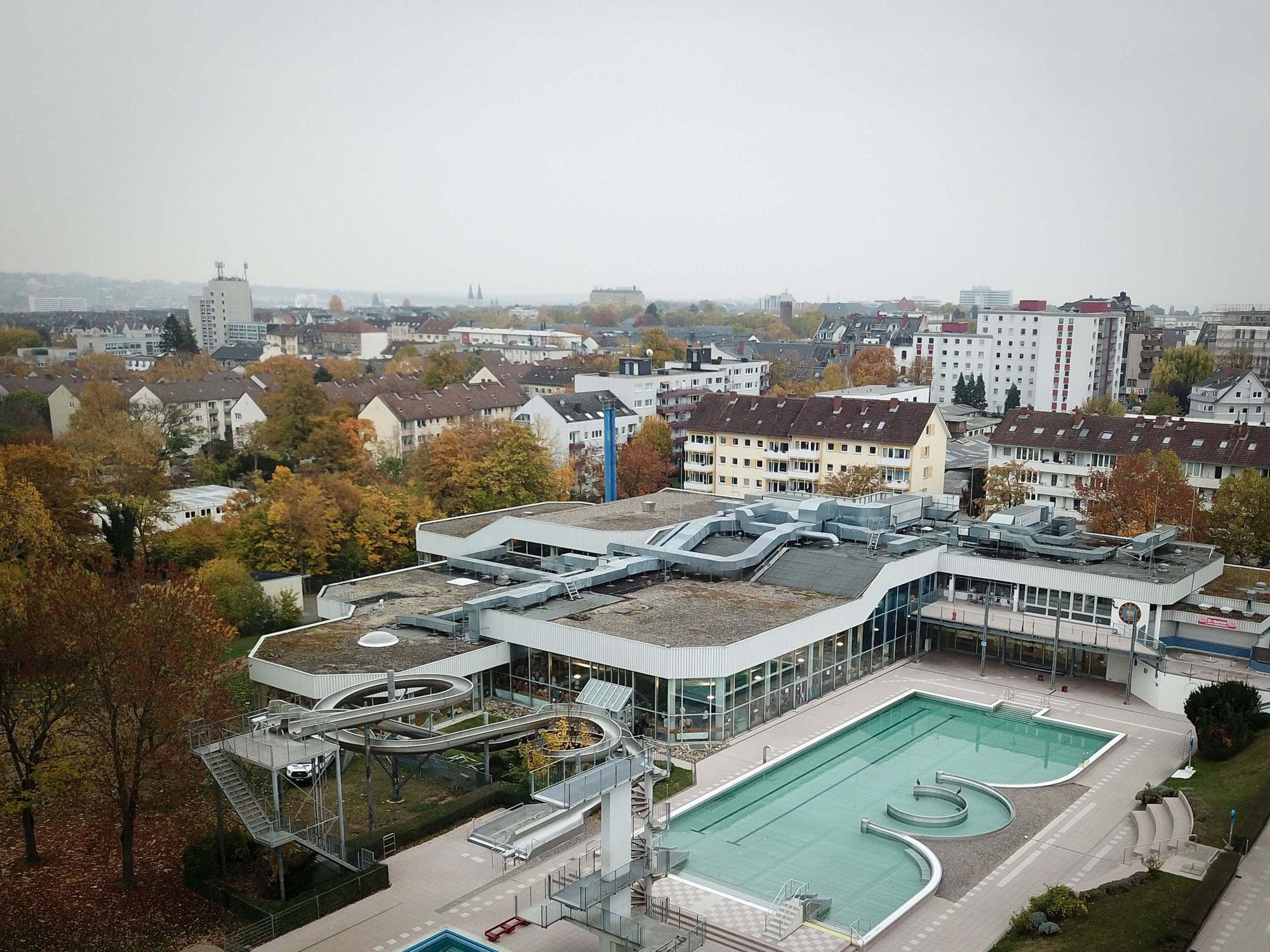DMS 1. Bundesliga in Hessen