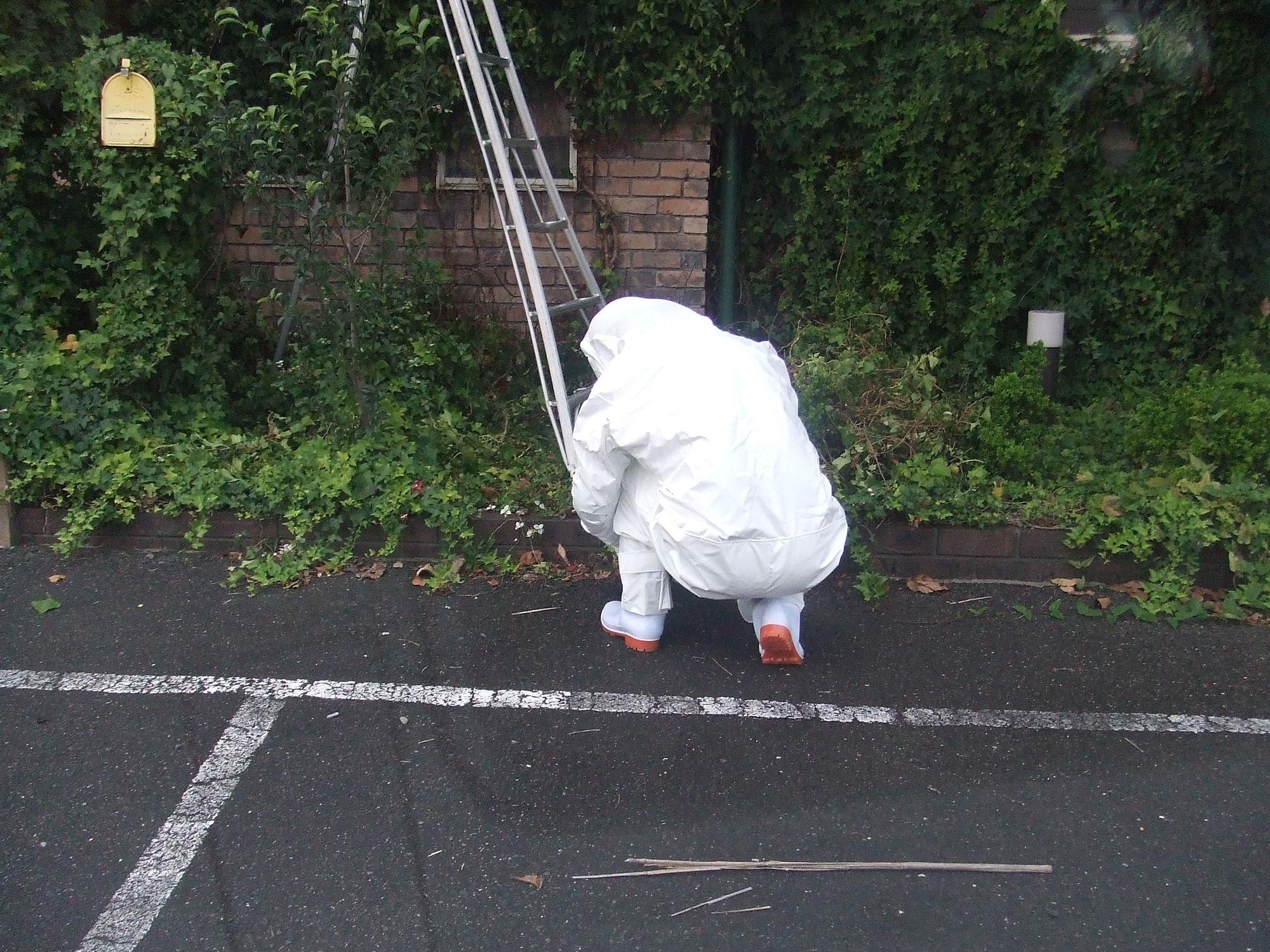 名古屋市中川区で暑くて倒れそうな蜂の巣駆除作業員
