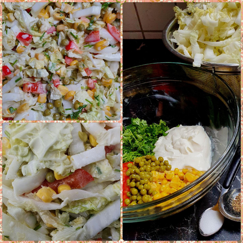 Zieh- Salat- Chicorée