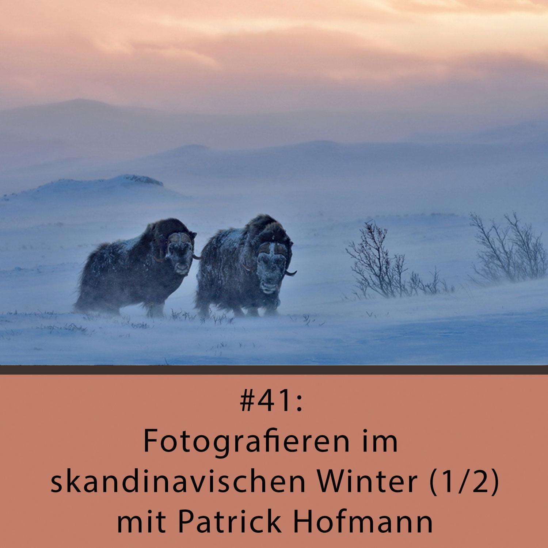 Naturfotocast #41 - Fotografieren im skandinavischen Winter (1/2) - mit Patrick Hofmann