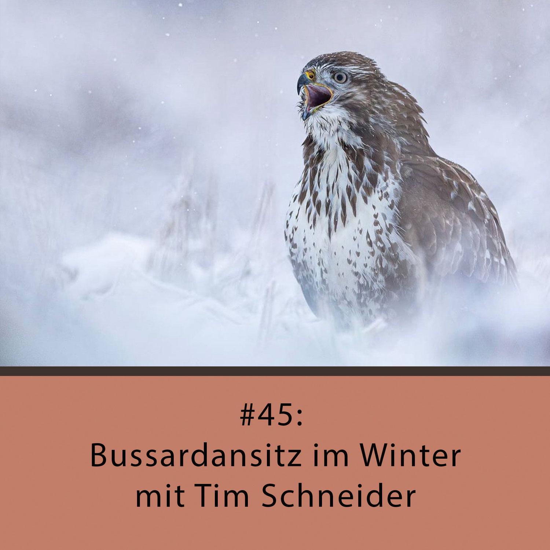 Naturfotocast #45 - Bussardansitz im Winter - mit Tim Schneider