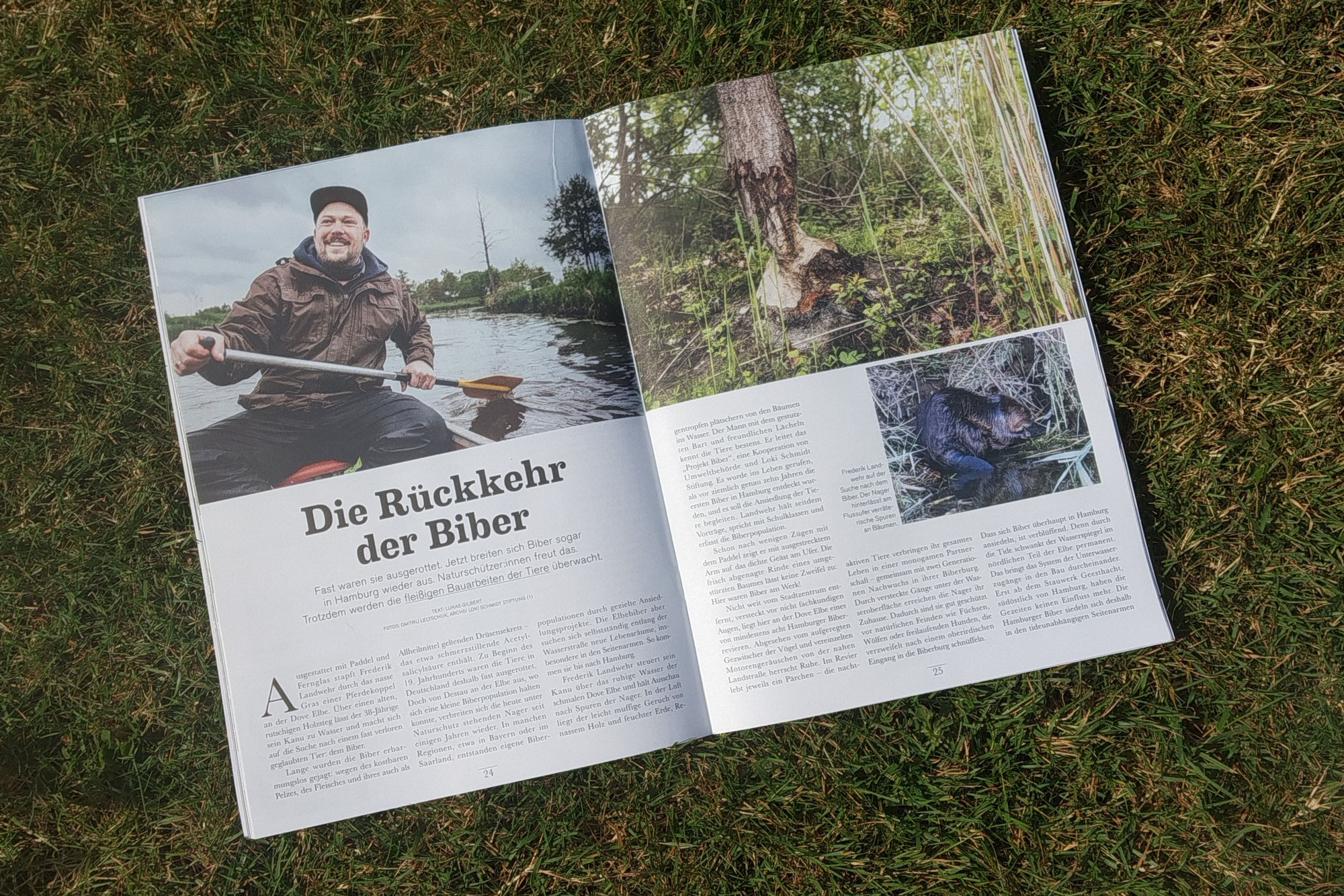 Unsere Elbe - Über Biber, Mikroplastik & Co.
