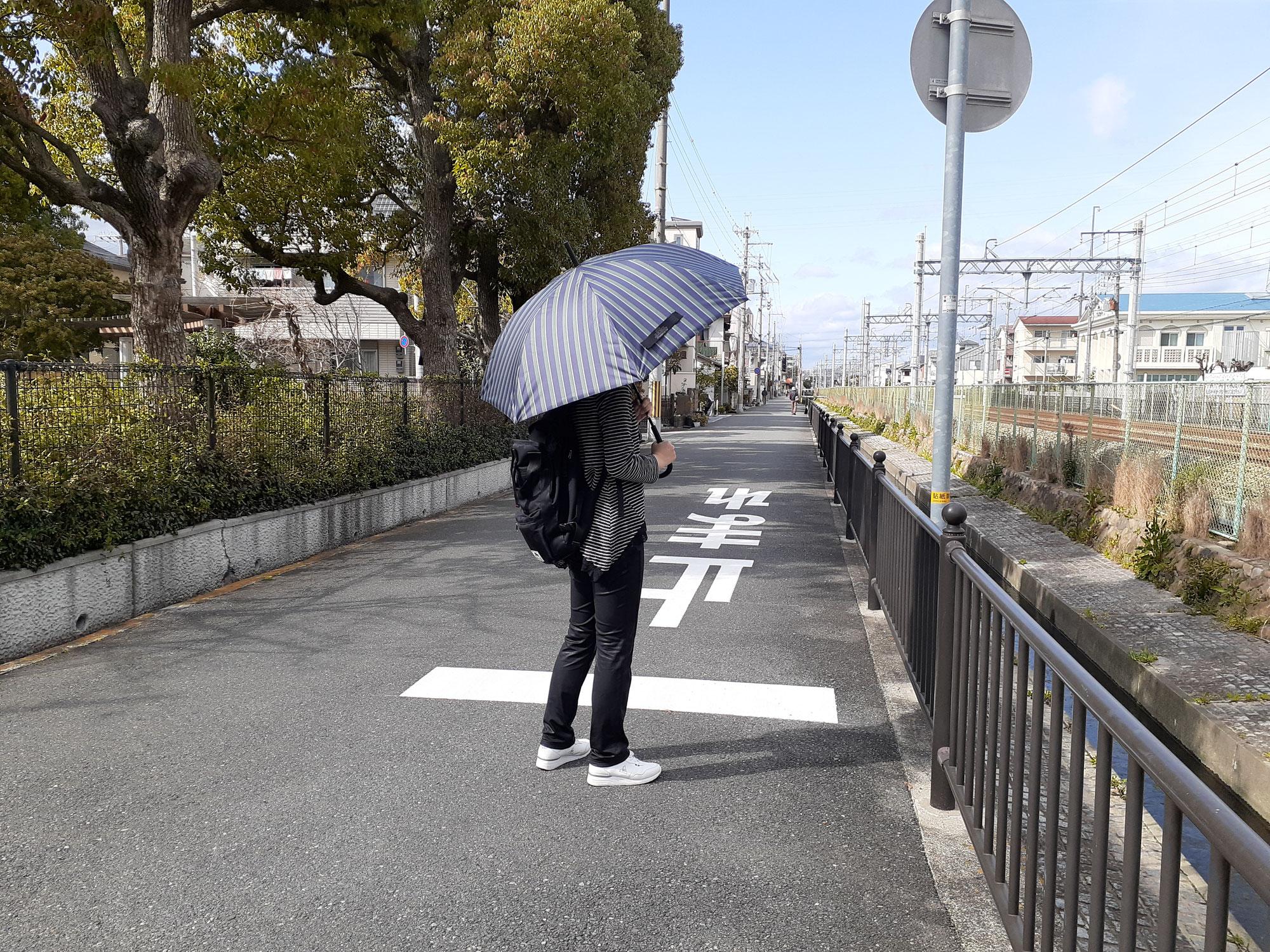 「晴雨兼用傘」を「男女問わず家族兼用」で使ってみるという発想