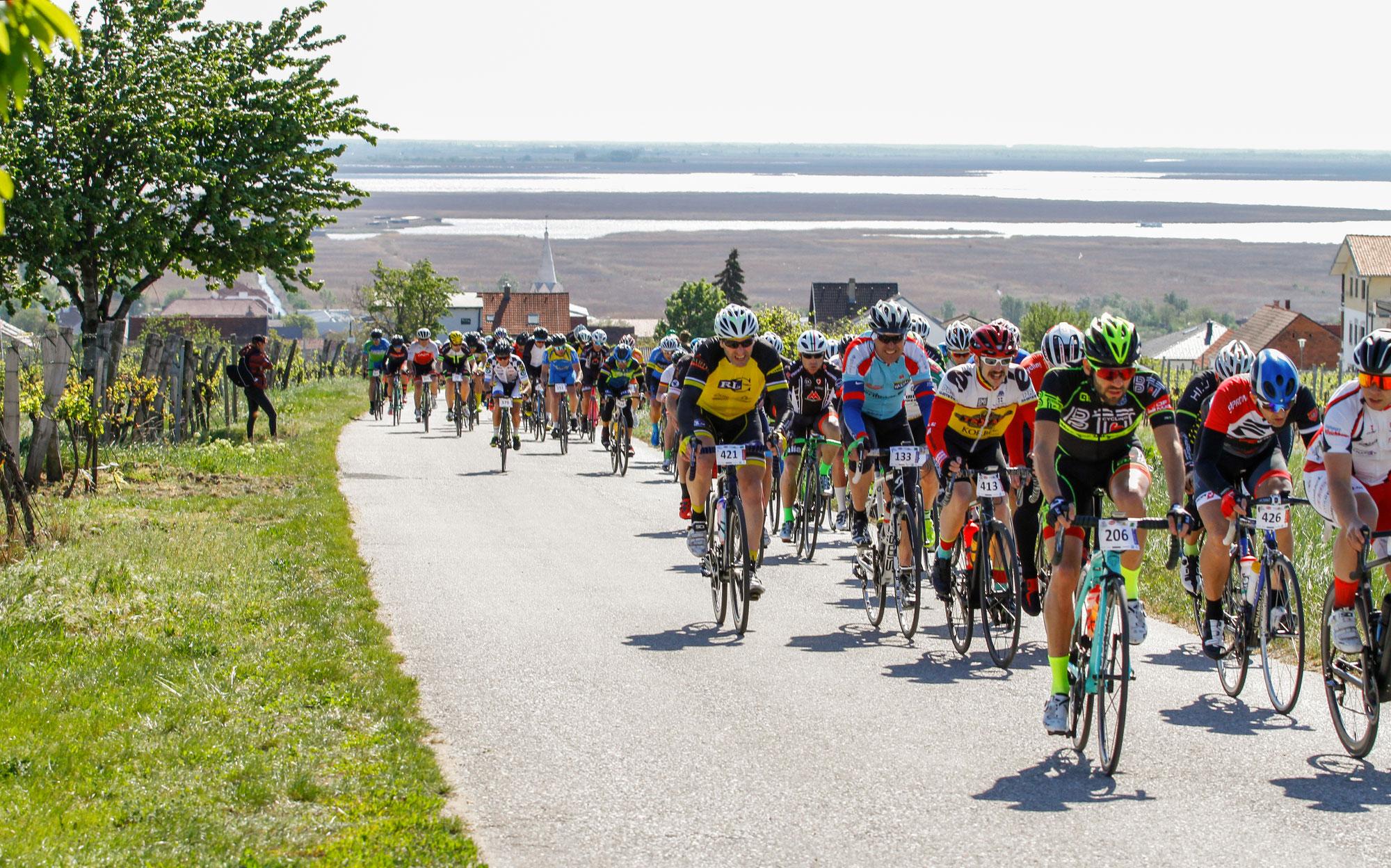 Neusiedler See Radmarathon mit tollem Starterfeld