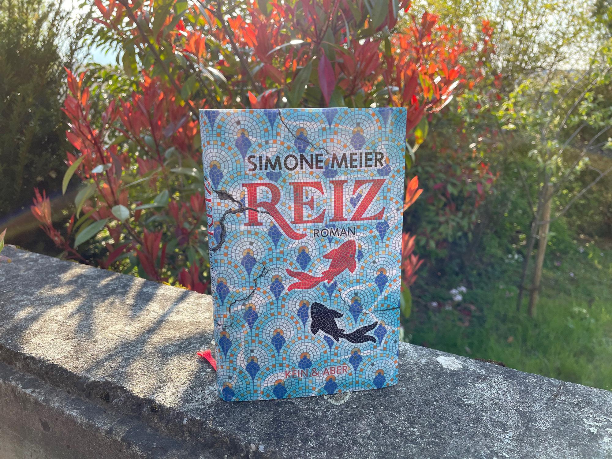Simone Meier: Reiz (2021)