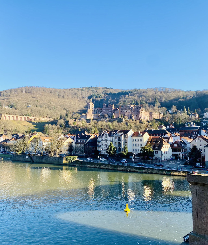 Stadt Heidelberg - 1 Jahr Corona