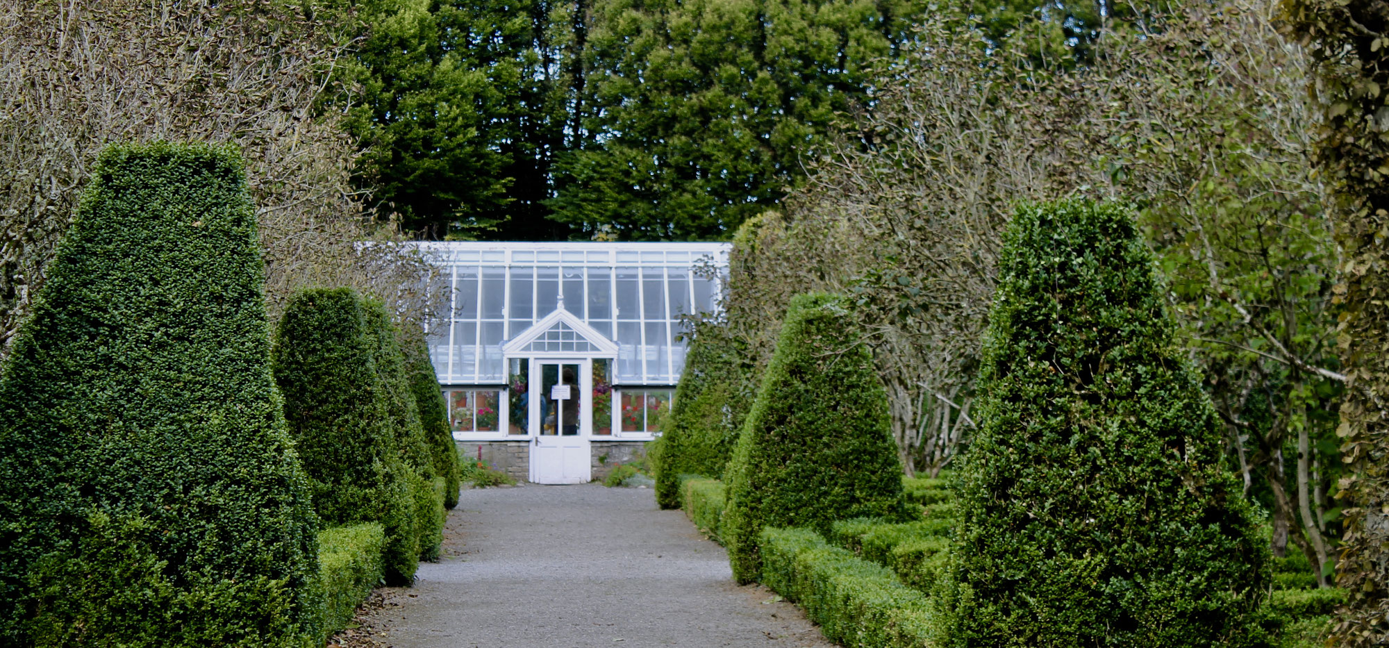 The Glasshouse at Birr Castle Co. Offaly
