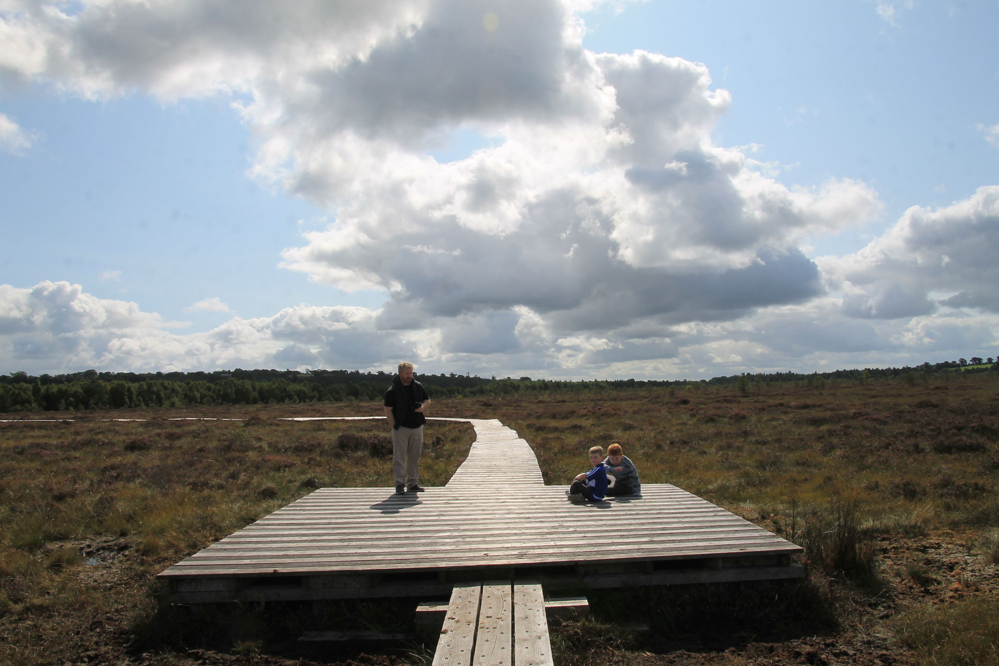 Abbeyleix Peatlands Boardwalk