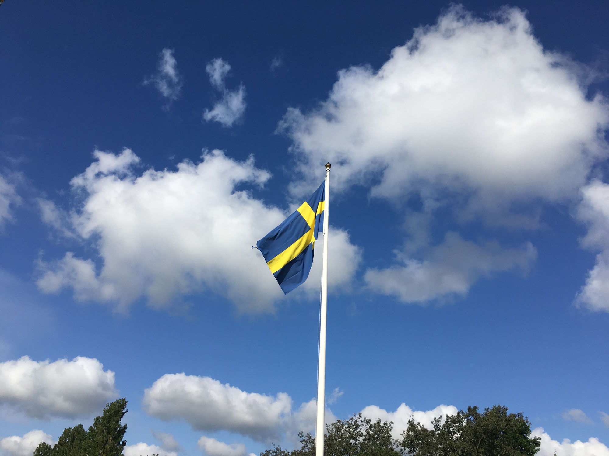 Schweden und das Corona-Virus - Der andere Umgang mit der Pandemie