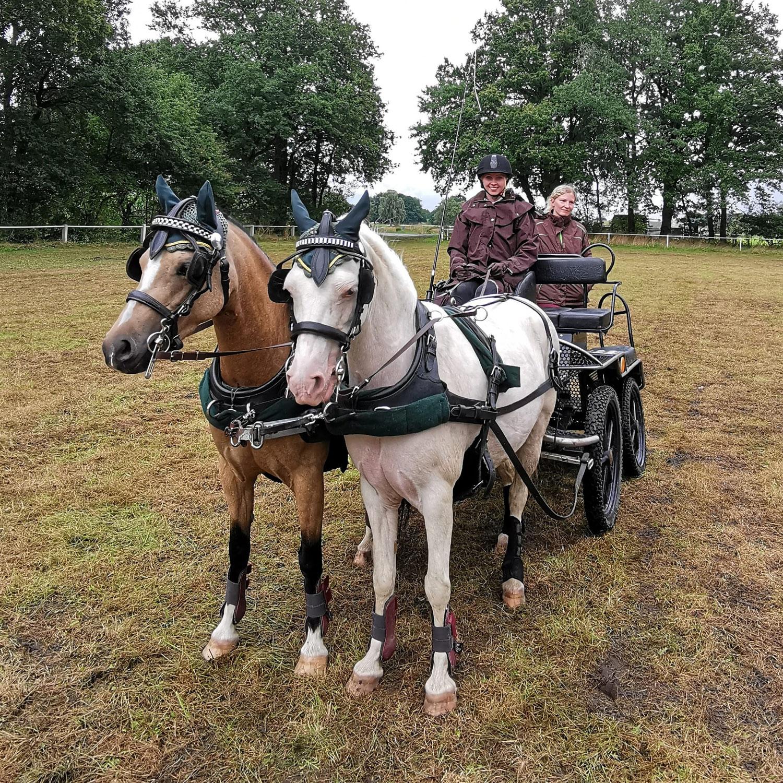 Doppelsieg beim Fahrertag in Sulingen