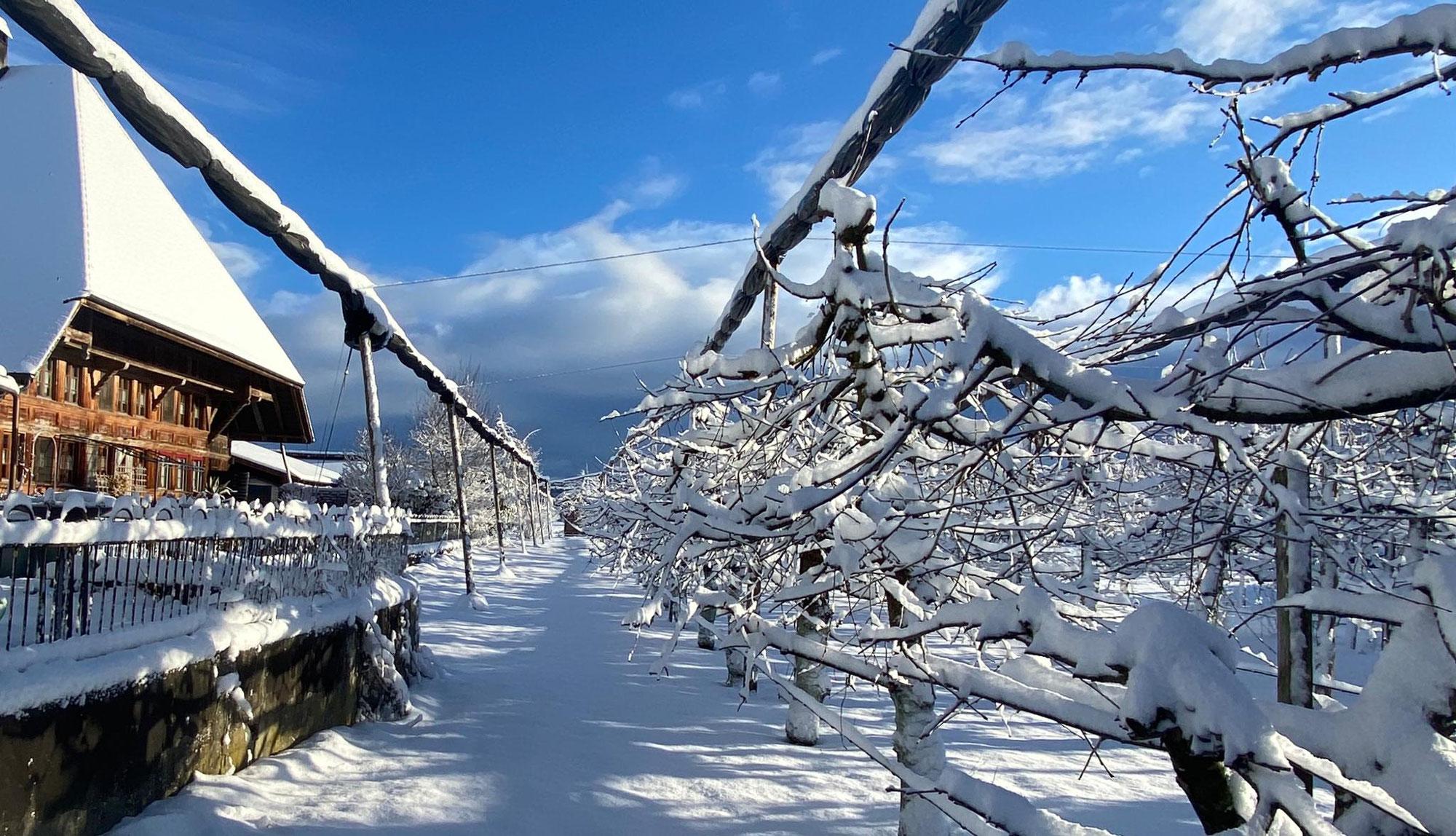 vB-Hof im Winter