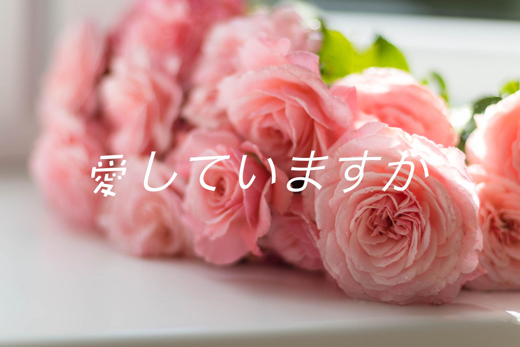愛していますか