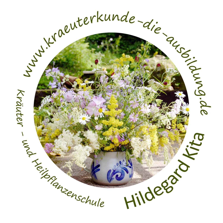 Heilpflanzenschule 2020 - Programm veröffentlicht!