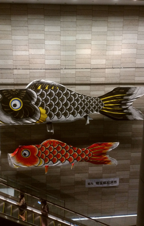 【新27期】スカイツリー&鯉のぼり