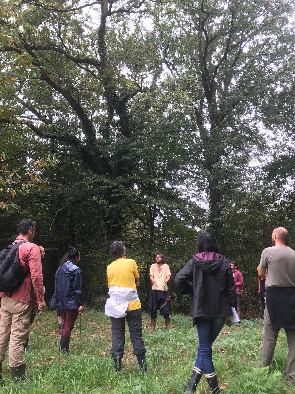 Journée d'initiation à l'agroforesterie samedi 13 Novembre