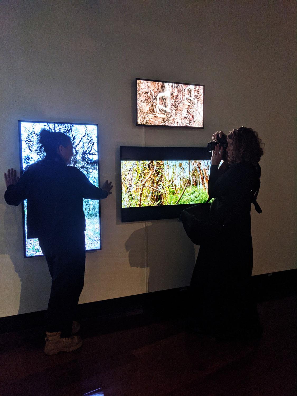 Artist Talk 'Her Beauty and Her Terror' (26 June 2021) Caboolture Regional Art Gallery
