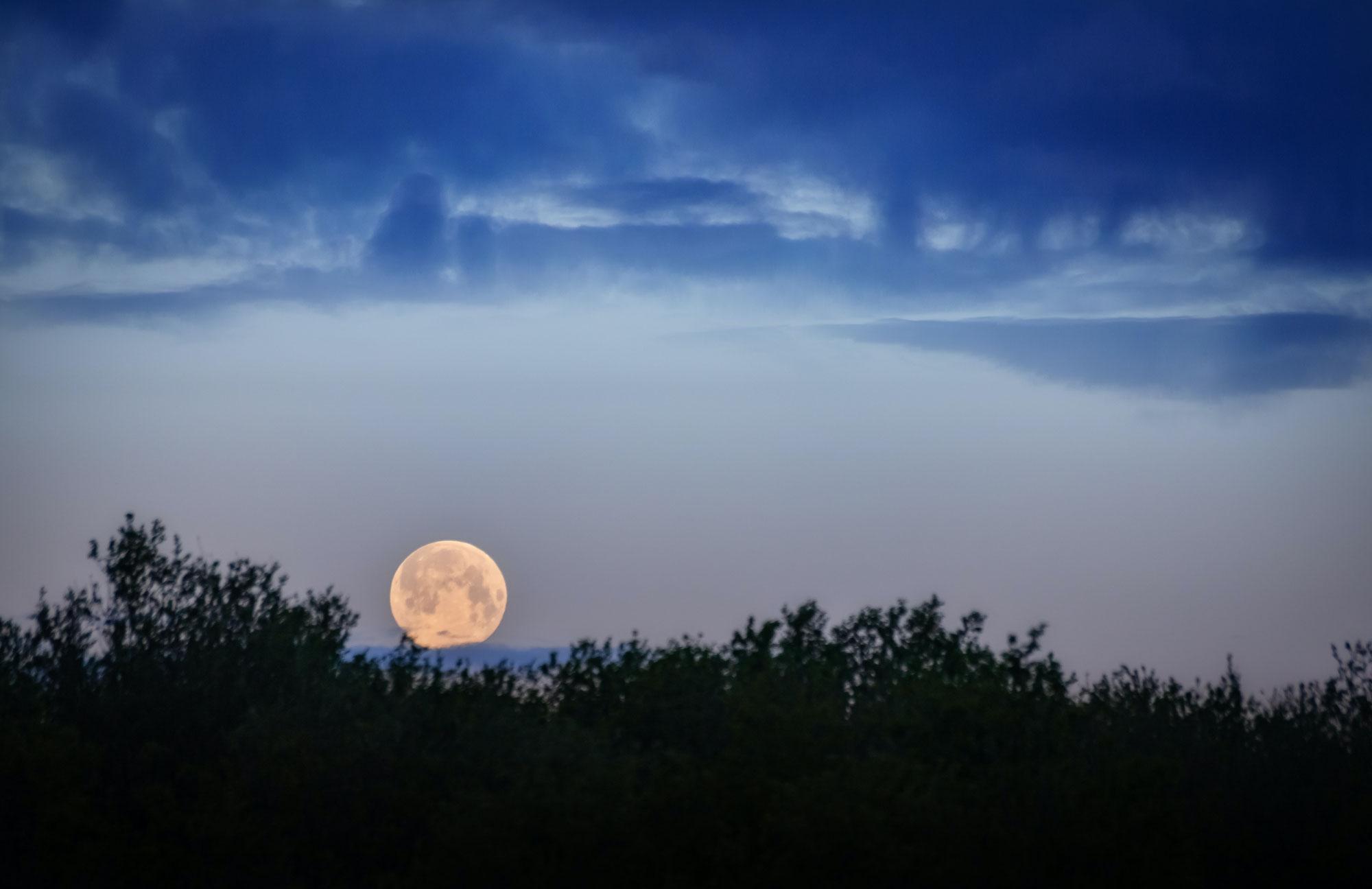 Volle maan in Schorpioen ‧ What Goes Around Comes Around ♥ Angelina ♥ Lichtwerkers Nederland