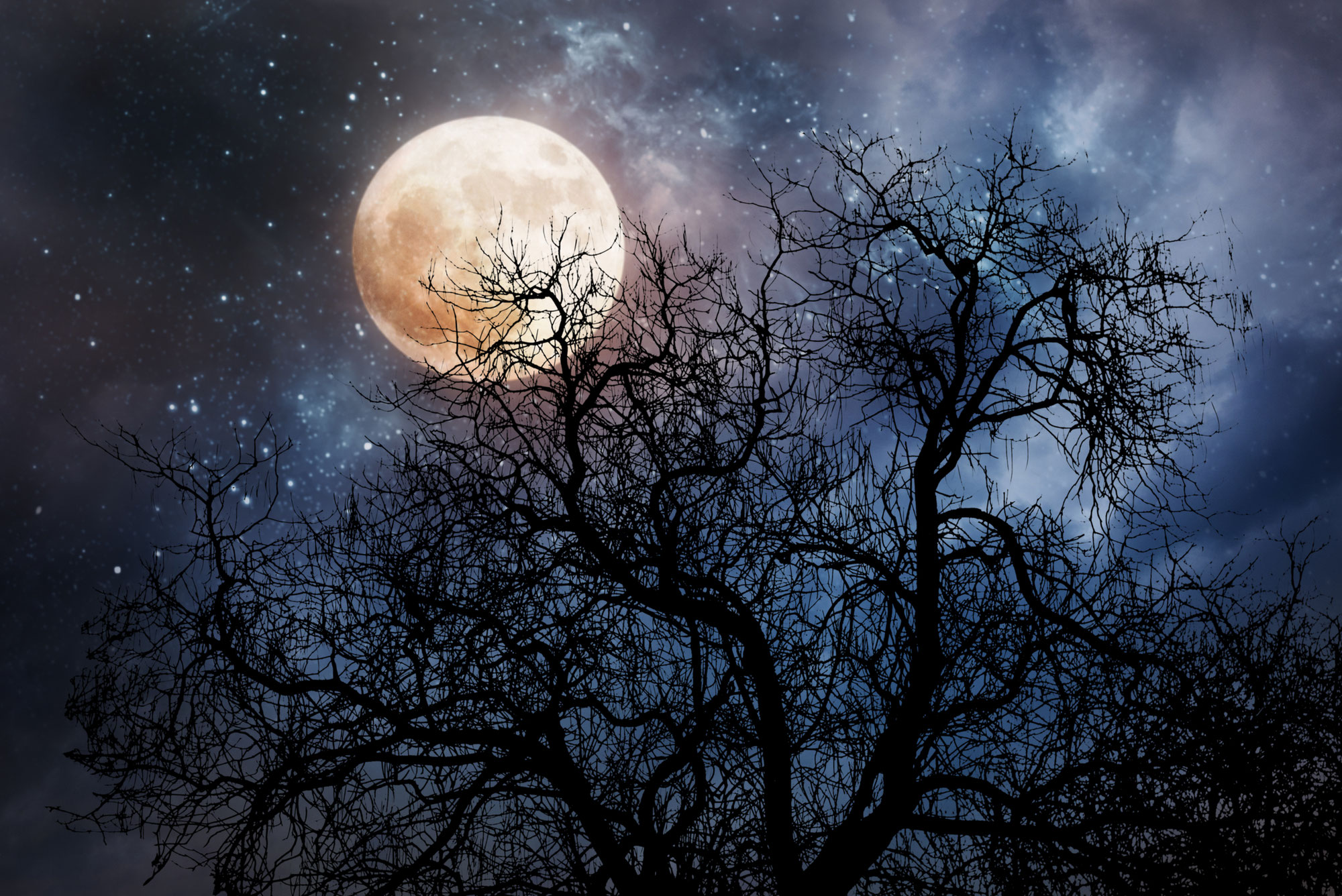 Volle Maan 20 oktober 2021 ♥ Petra Stam ♥ Lichtwerkers Nederland