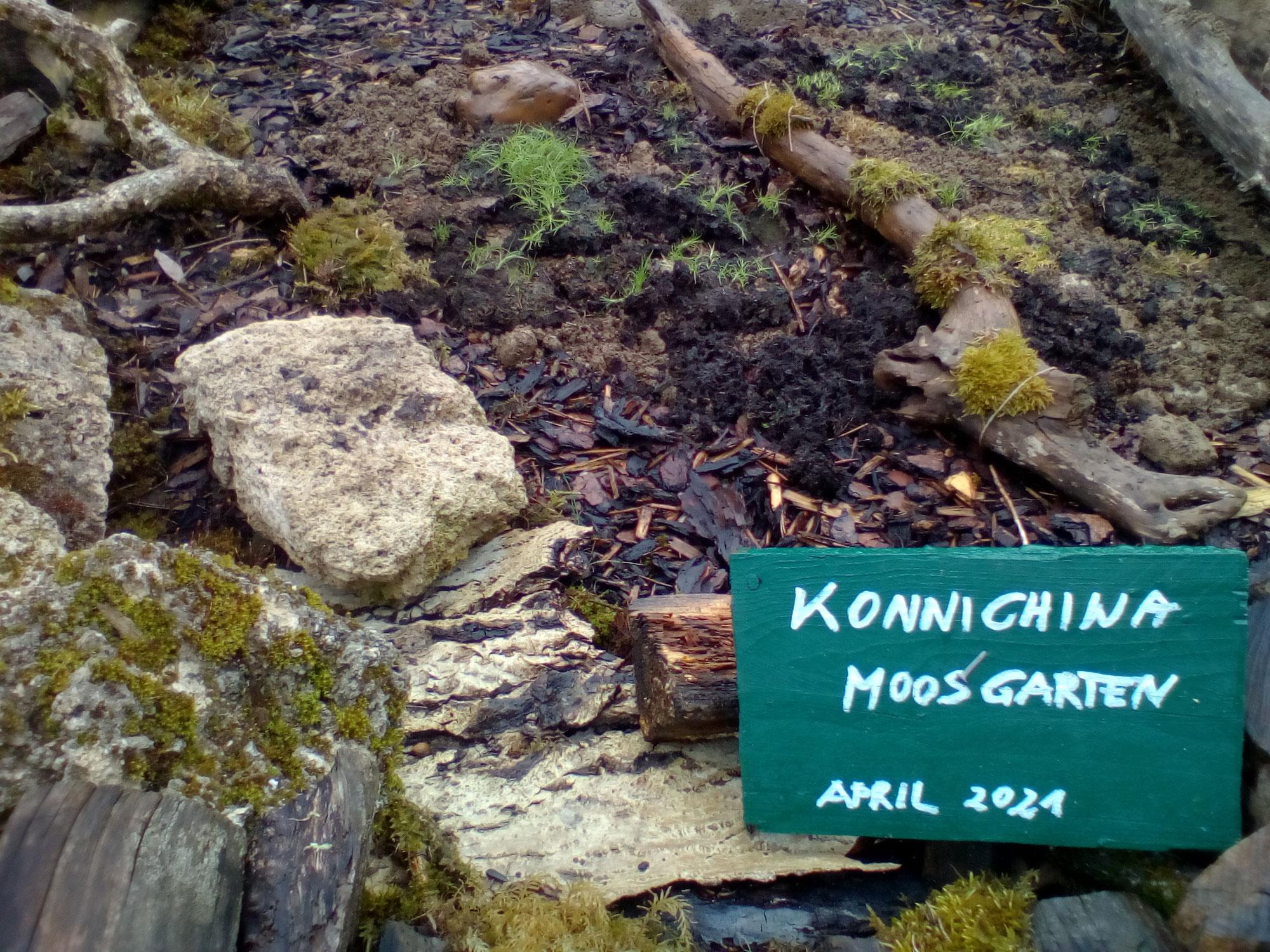 Juhuuu: Phase 2 für Konnichiwa Moosgarten hat begonnen: Jetzt wird gepantscht, gemixt, gestrichen und hauptsächlich gepatzt