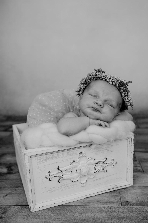Babyfotografie Tostedt, Babybilder Schneverdingen, natürliche Babybilder Rotenburg Wümme, Babyshooting Sittensen, Baby Fotoshooting Soltau, Babyfotograf Verden