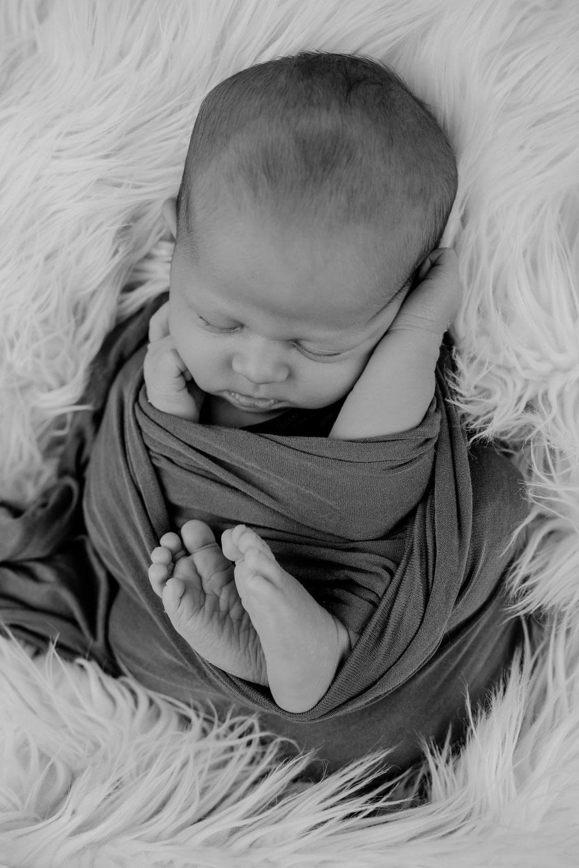 Babyfotografie Scheeßel | Babyfotograf Tostedt | Newborn Fotoshooting Buchholz in der Nordheide | Baby Fotograf Schneverdingen | Baby Fotos Bad Fallingbostel