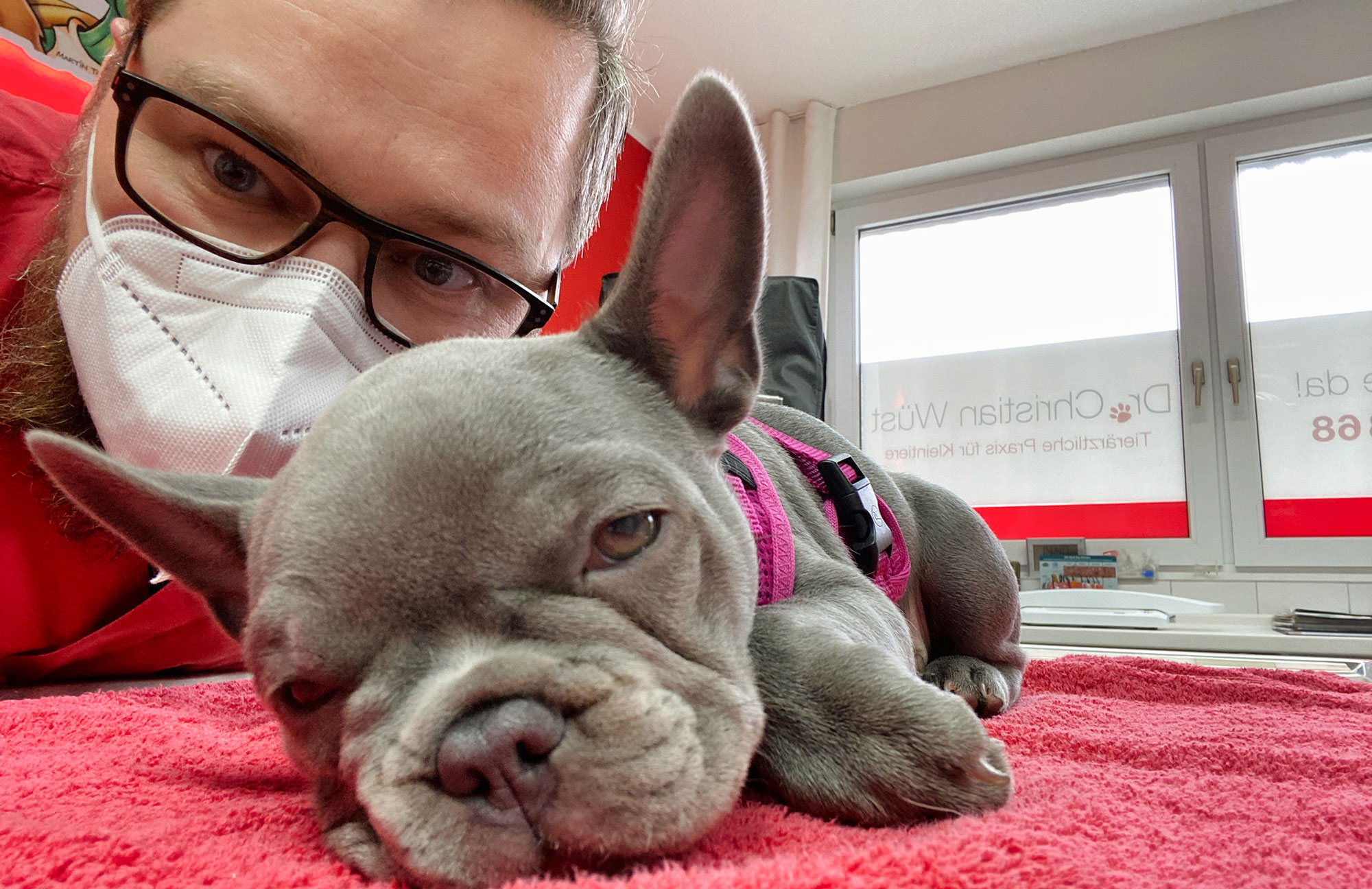 Verrückt! Erster Besuch bei Tierarzt Dr. Wüst in Gladbeck – komplett verpennt!