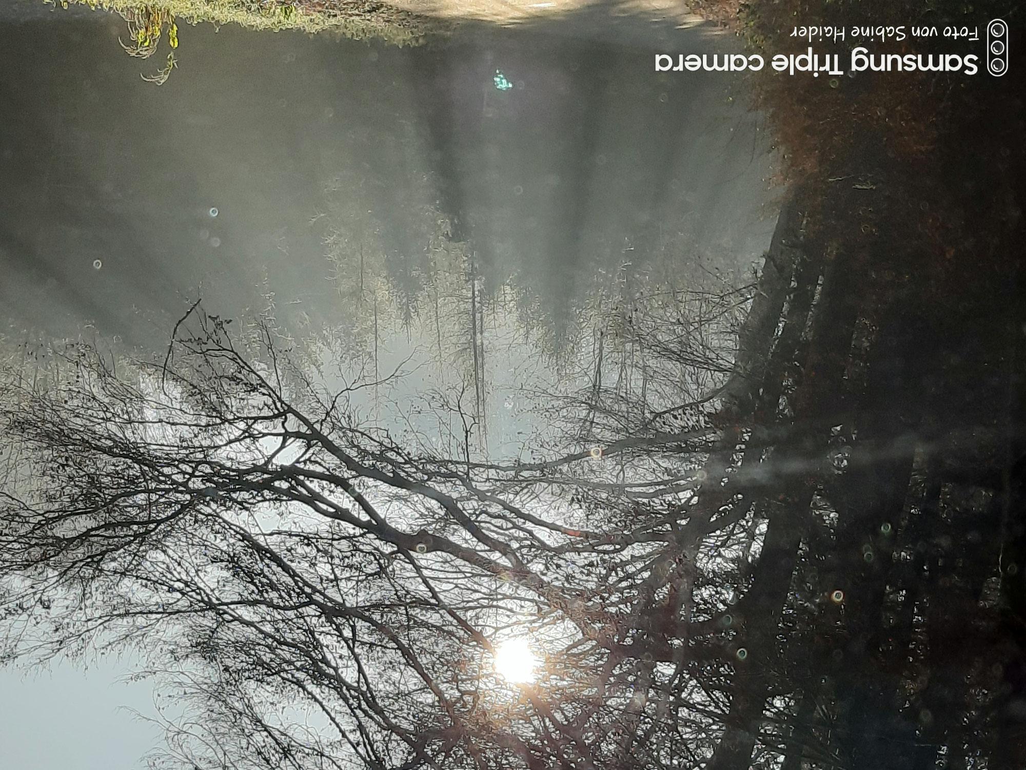 Wintersonnenwende- heiße das Licht wilkommen !!