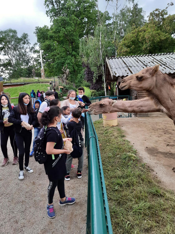 Besuch im Tierpark Essehof