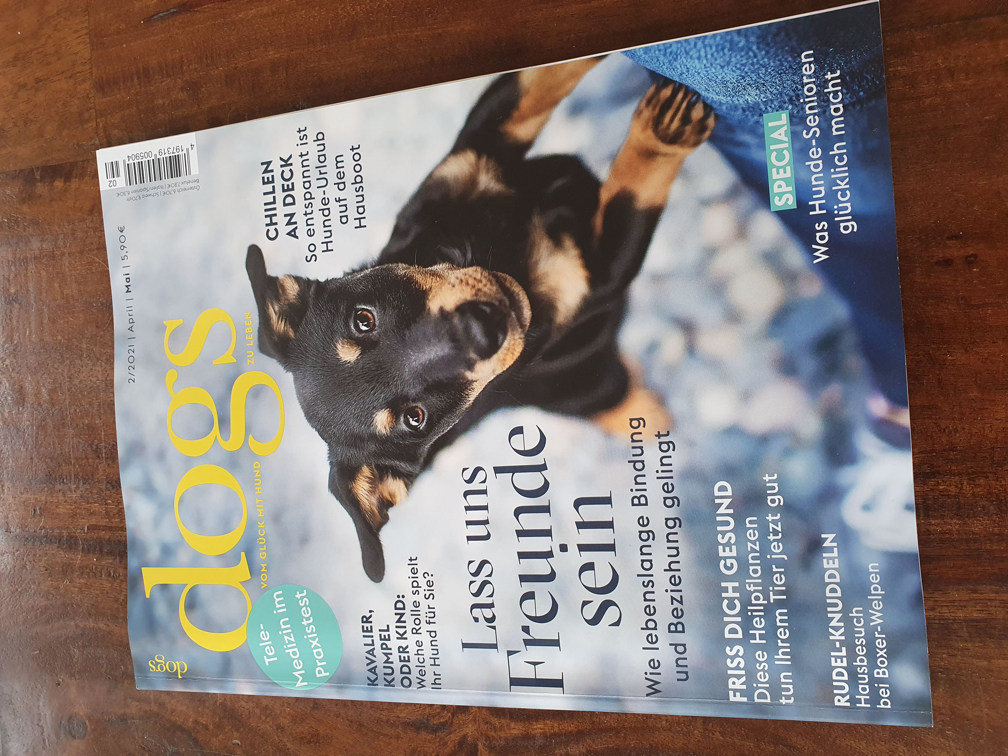 """Dr. Buzby's ToeGrips® in der """"dogs"""""""