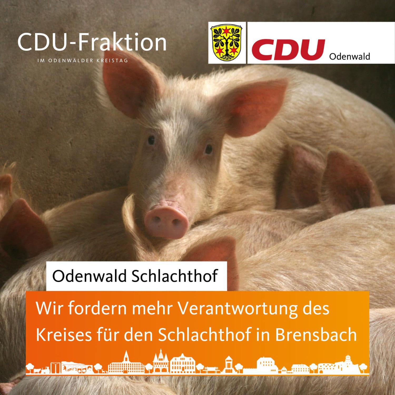 CDU-Kreistagsfraktion fordert mehr Verantwortung für den Odenwald Schlachthof. Koalition kontert mit Minimalschritt.