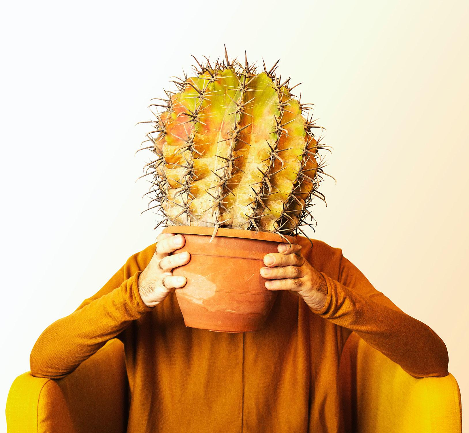 Zwijgende cactus
