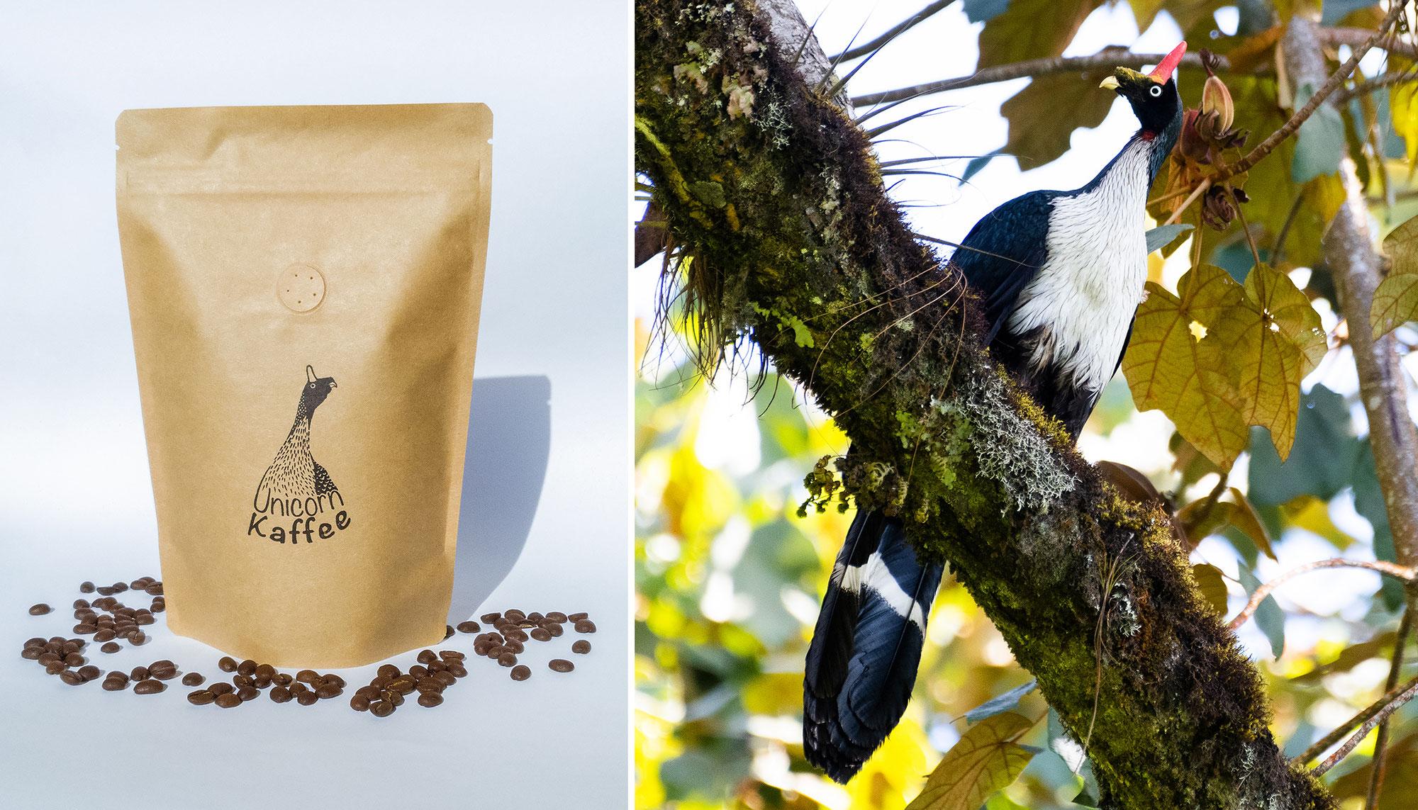 Vogelfreundlich & exquisit: Unicorn Kaffee