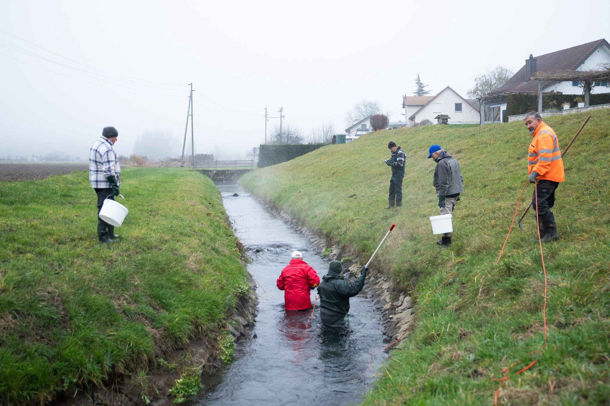 Abfischen Hinterwasserkanal Full Dezember 2020
