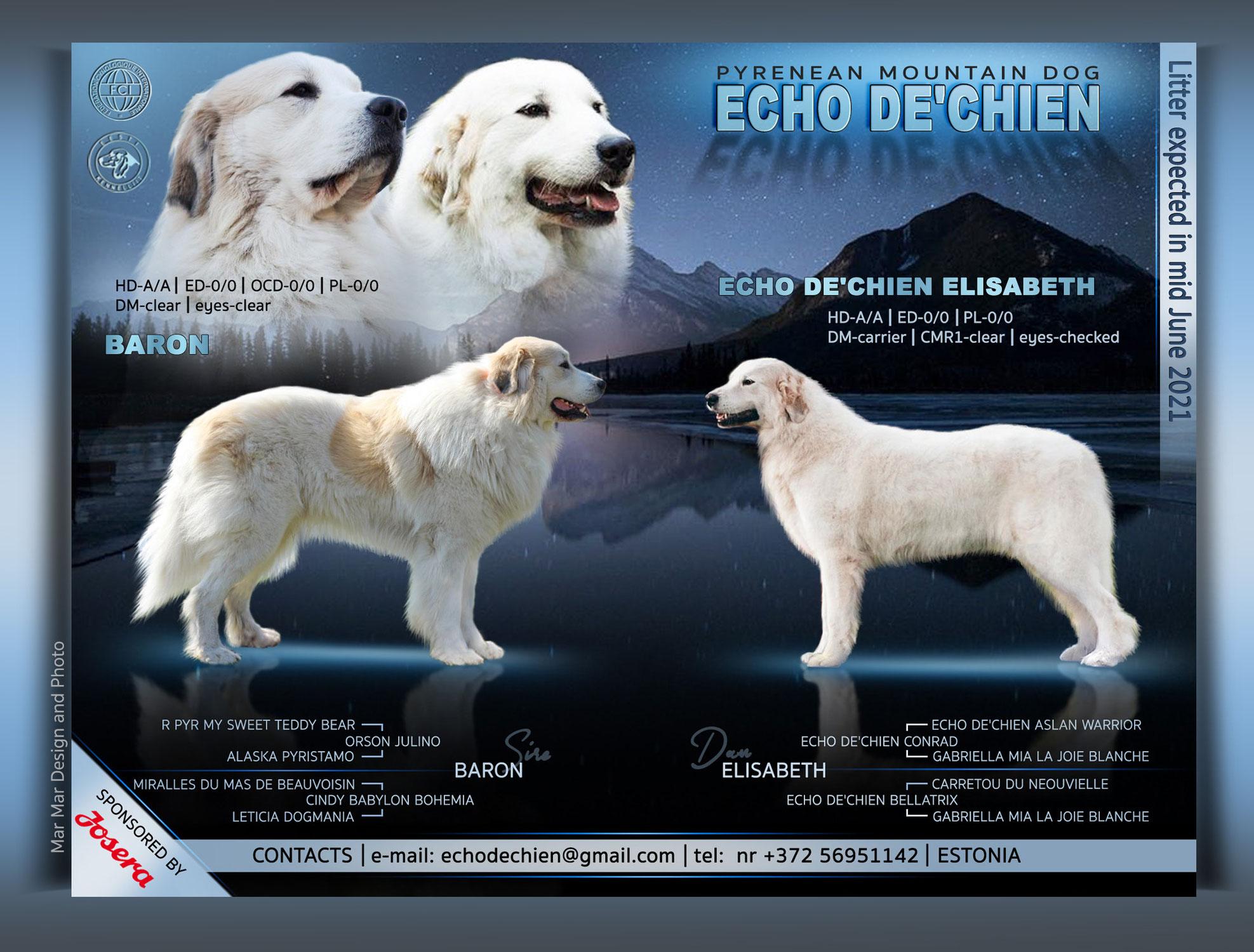Echo de'Chien L pesakond sünnib juuni keskel 2021