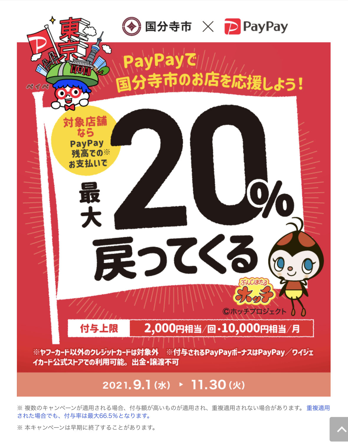 pay payのご登録を☆