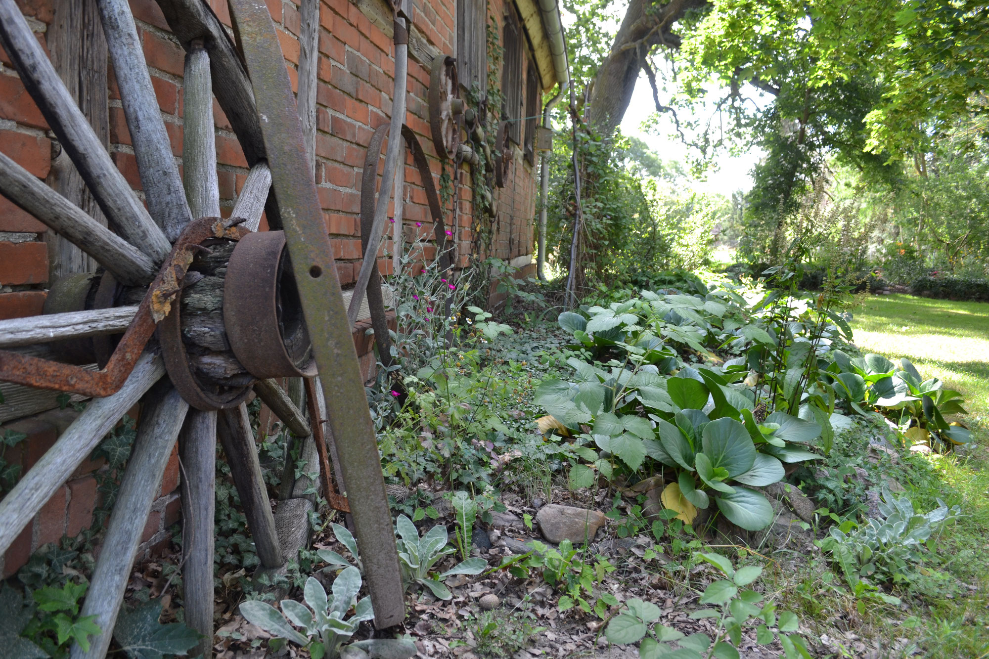 Natur pur im Neulinger Garten