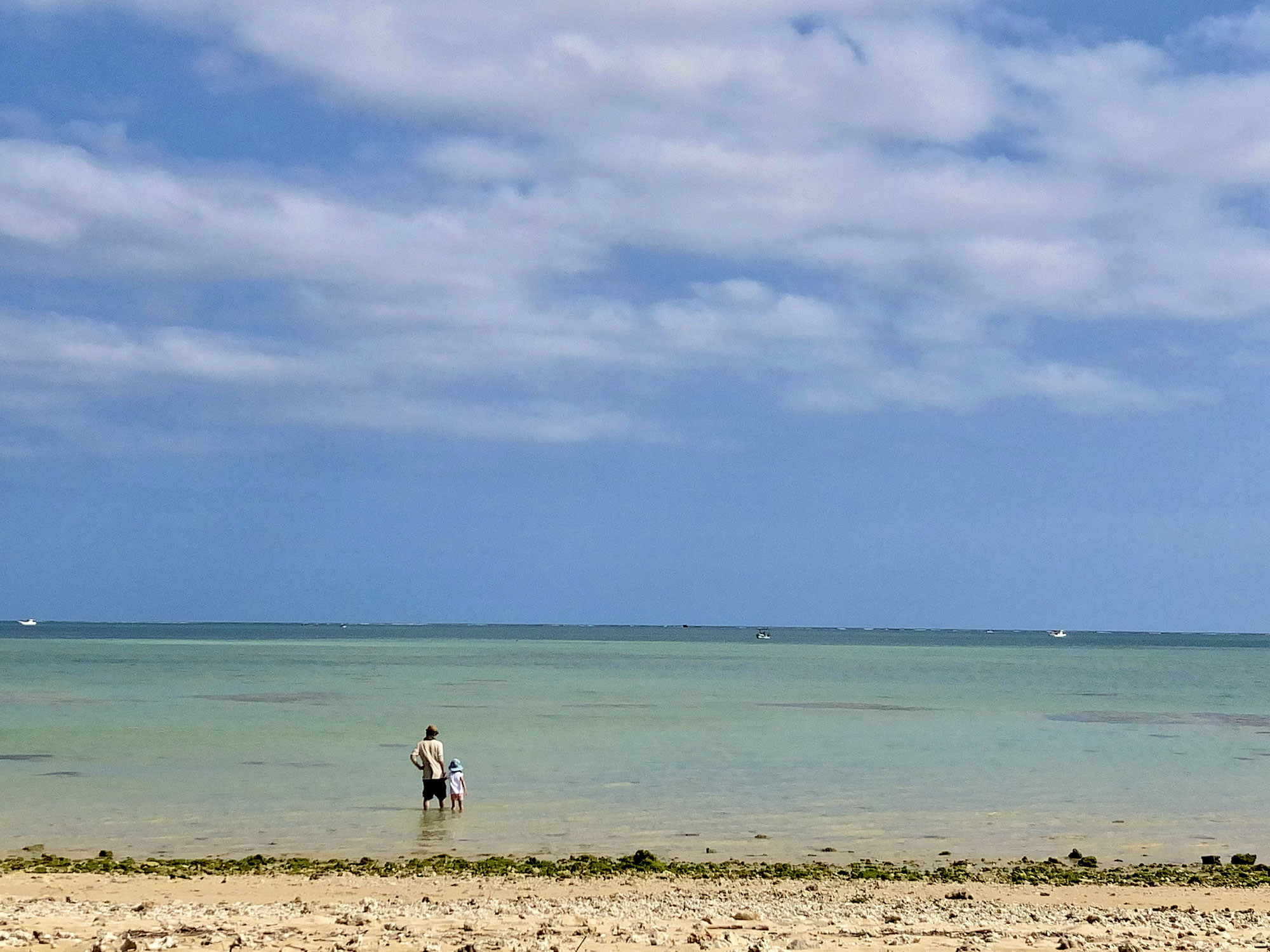 弥生の沖縄