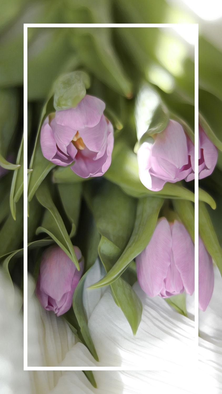 Home | Saisonale, florale Inspirationen