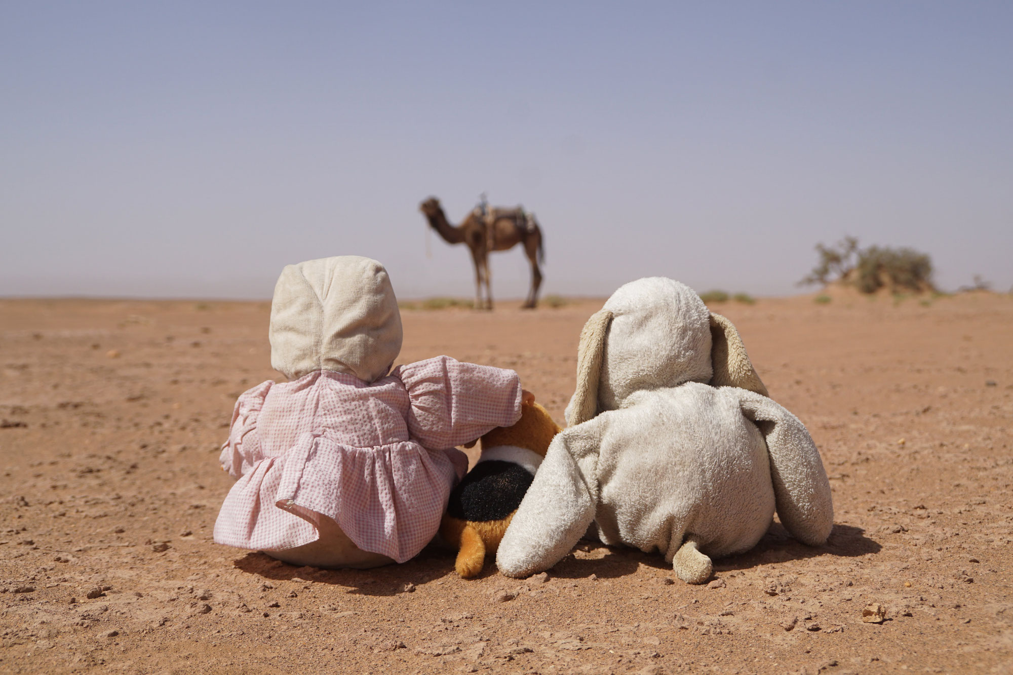 Trek nomade enchantée