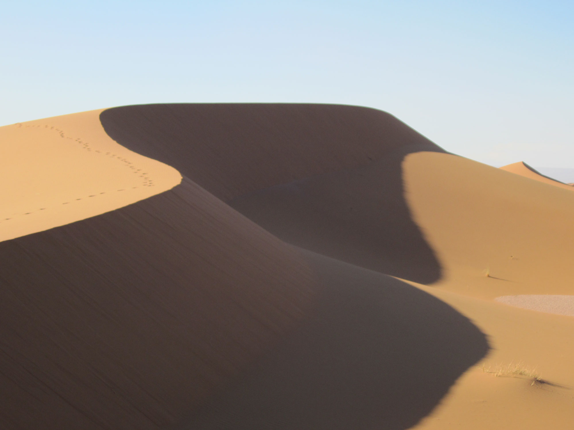Carnet de voyage Sahara