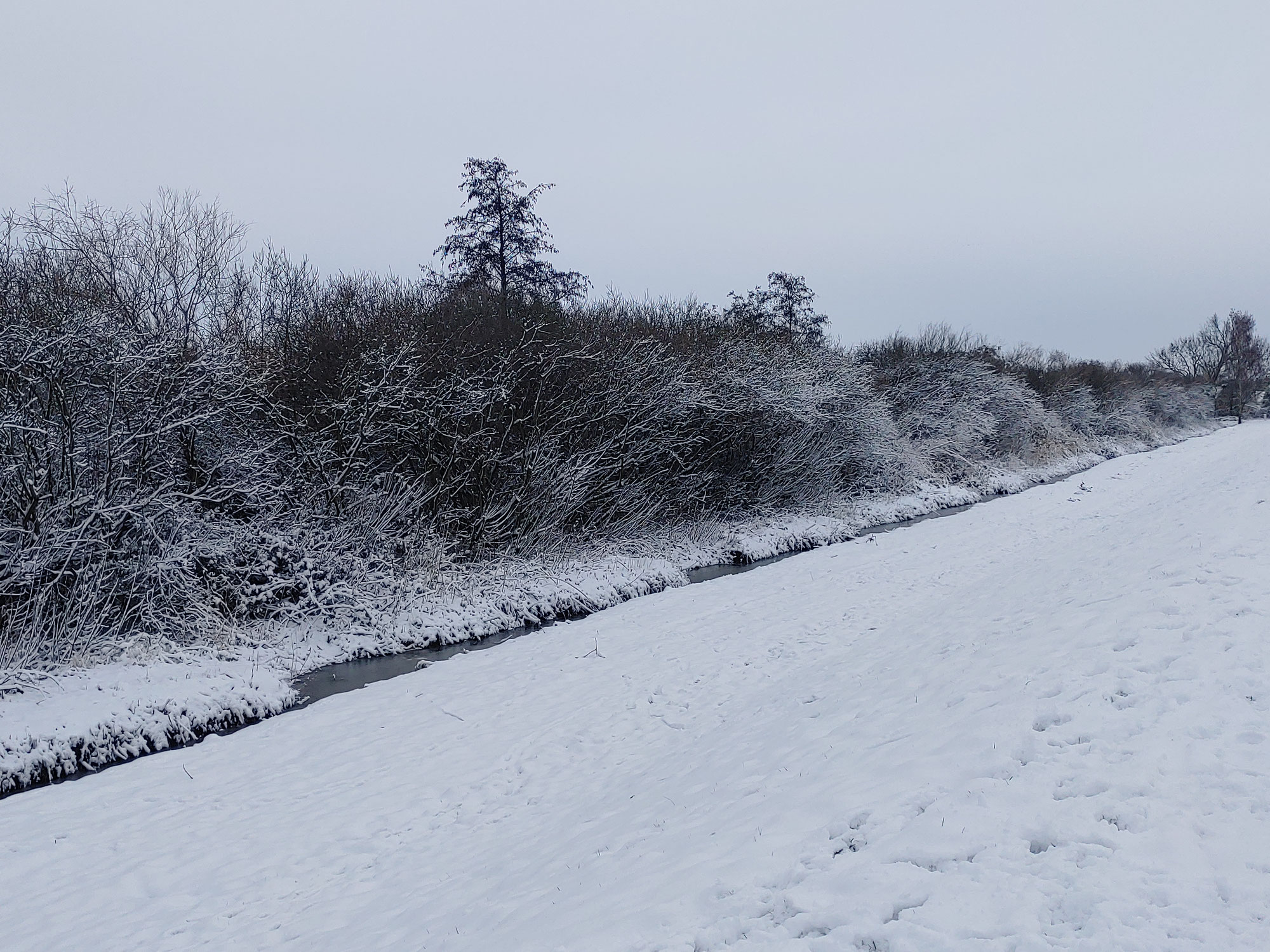 Schnee-Freuden