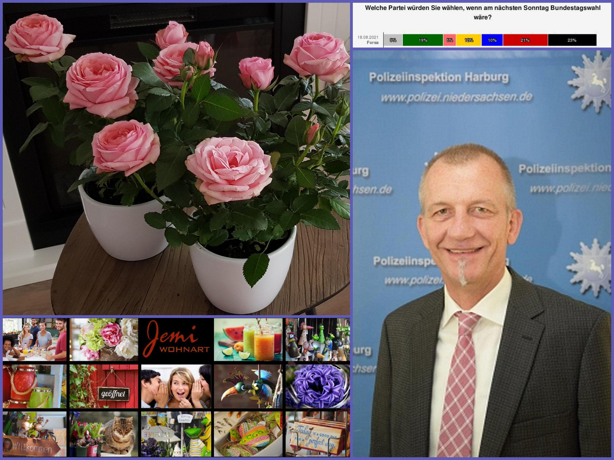 """Rosen und andere schöne Dinge von """"Jemi-Wohnart"""", Warnung vor Telefon-und Internetabzocke, und das Parteien-Dilemma zur Bundestagswahl!"""