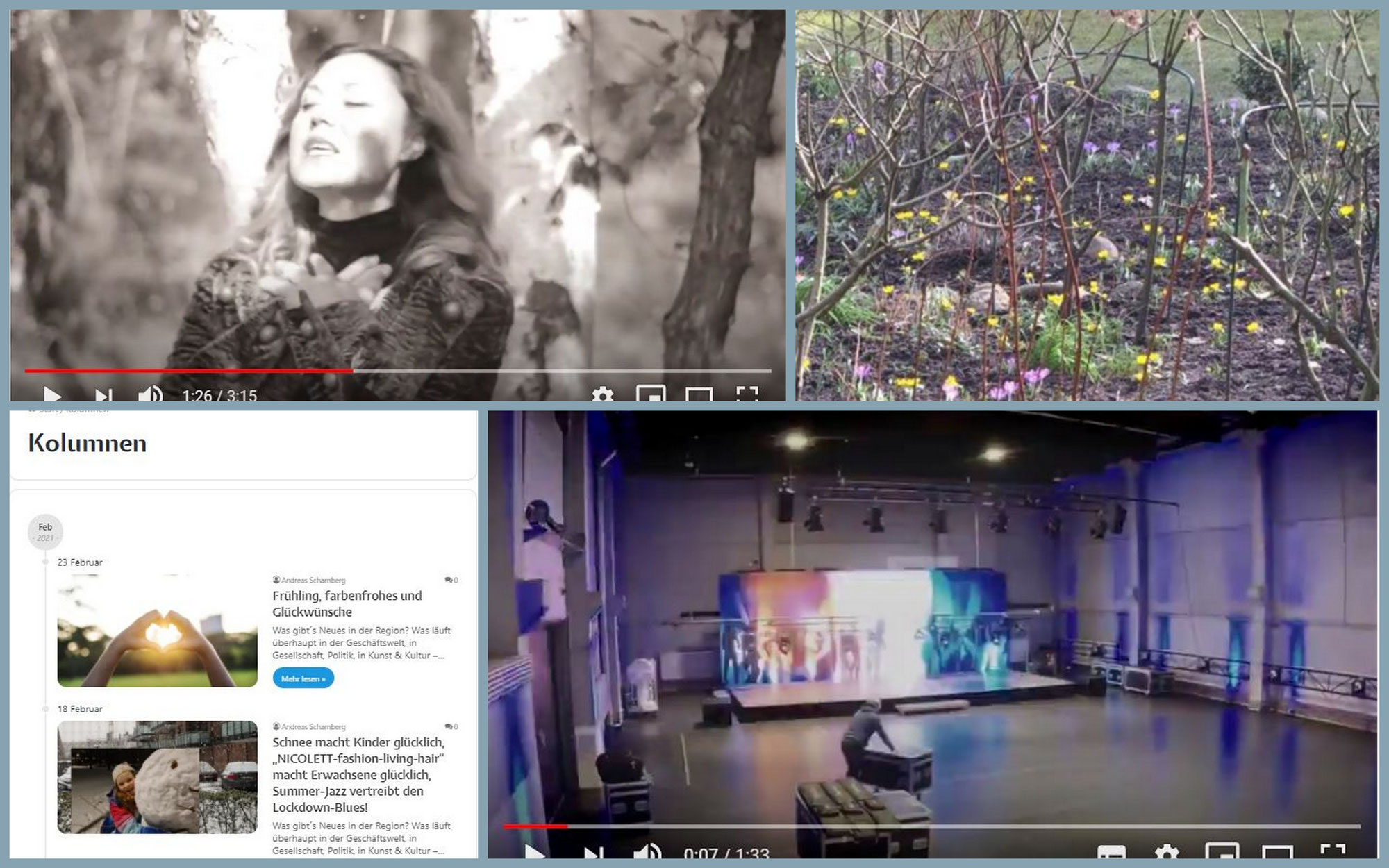 """Blühende Krokusse, eine neue Streaming-Halle mitten in Hamburg, AKTUELLES aus Süderelbe jetzt mit Kolumnen-Bereich und der Song """"Wenn ich dich verlier`..."""""""