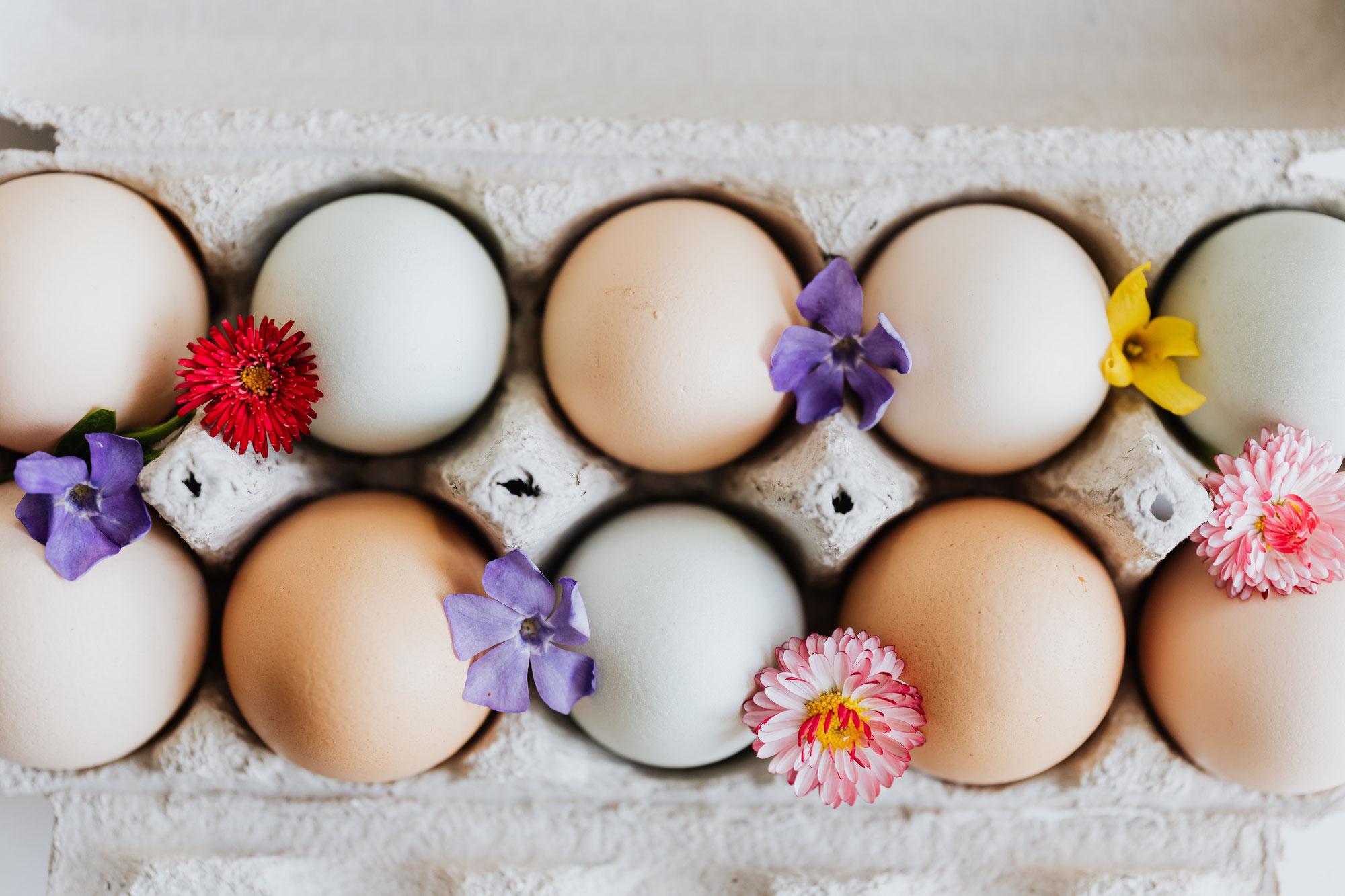 Ein frohes und gesundes Osterfest