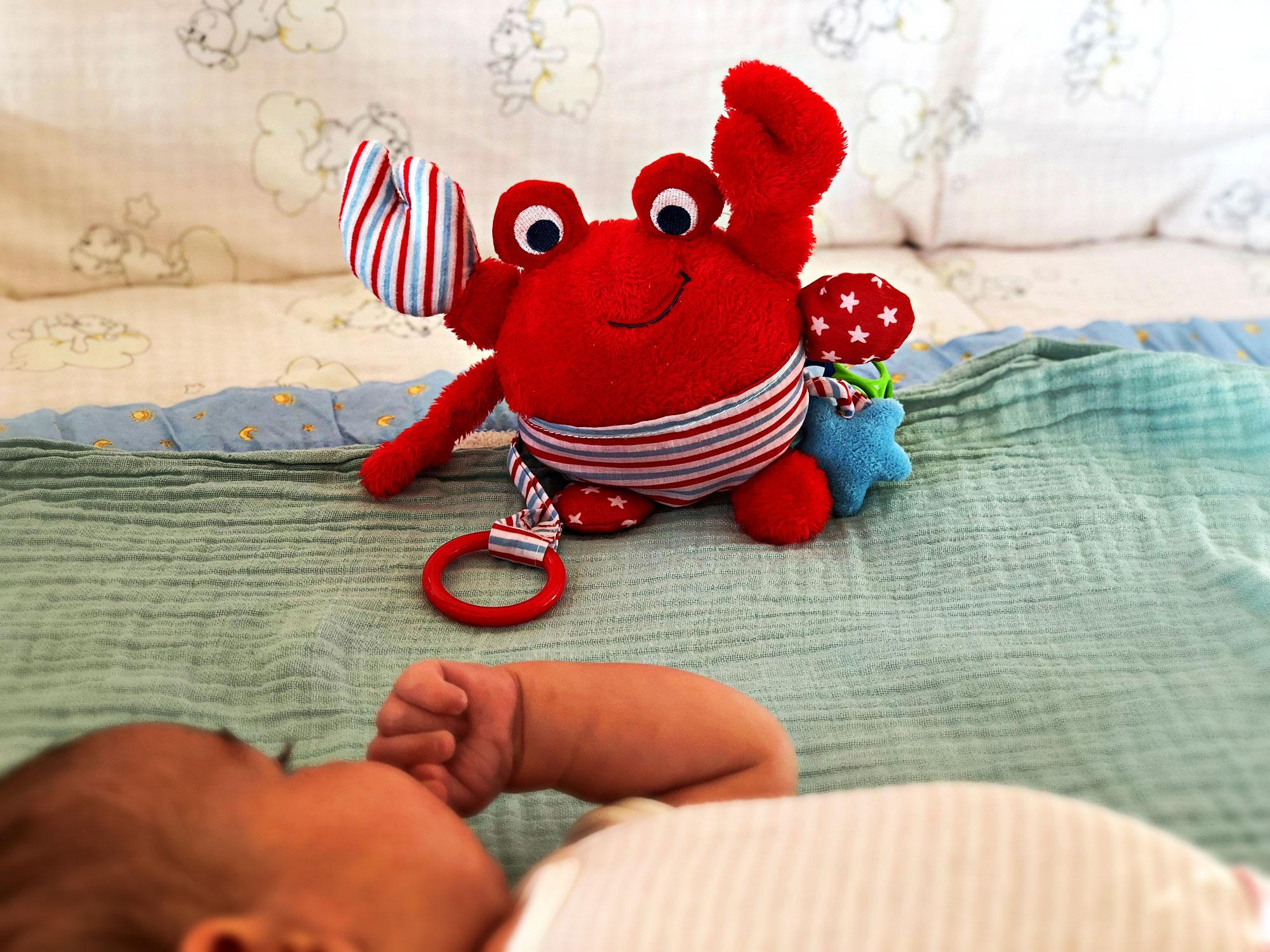 Mein Baby und die Krabbe