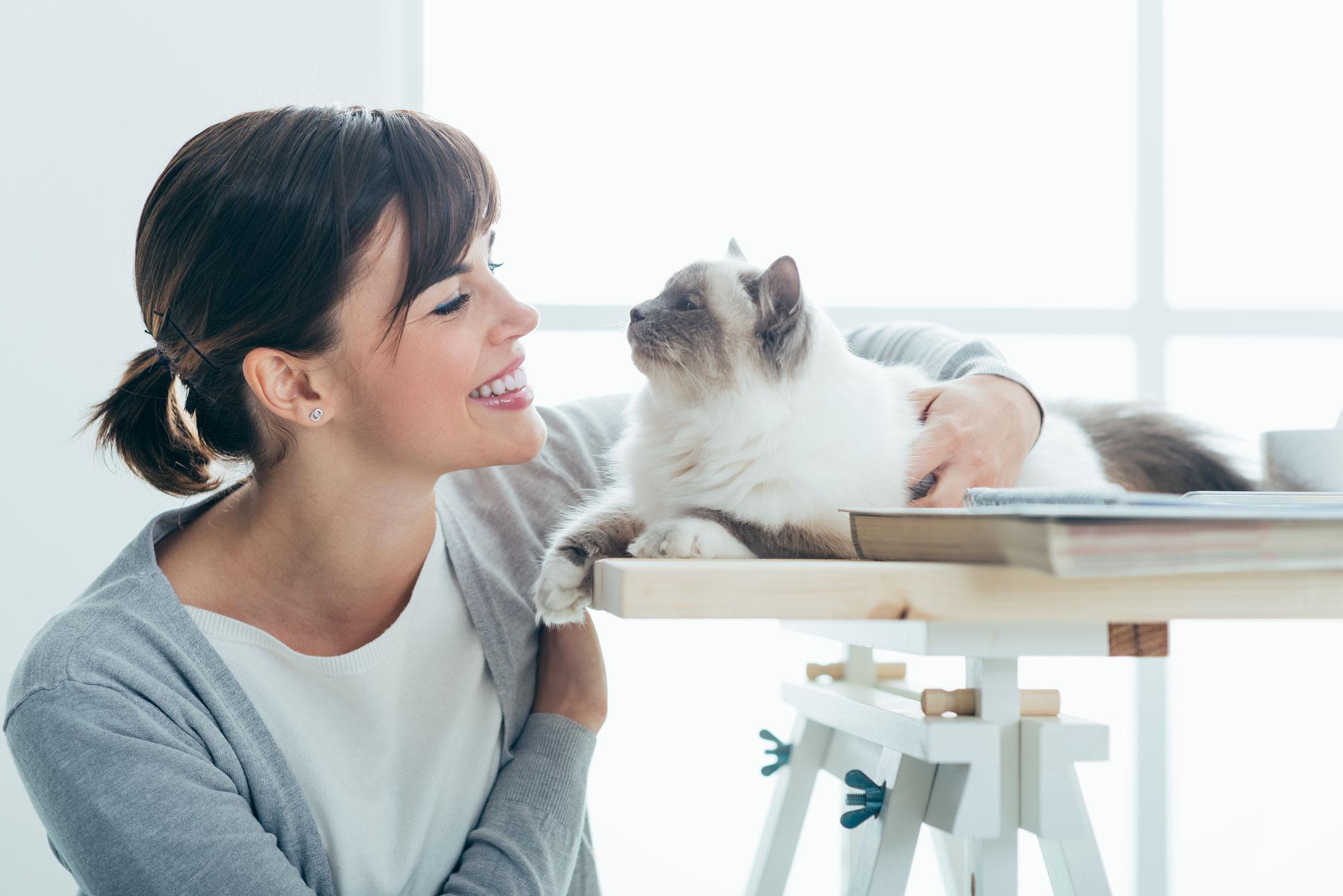 Aus der Therapiekiste einer Katzenpsychologin